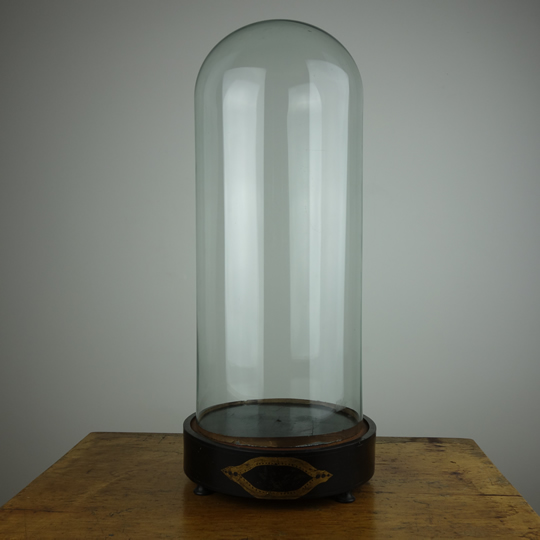 Antique glass dome -F-