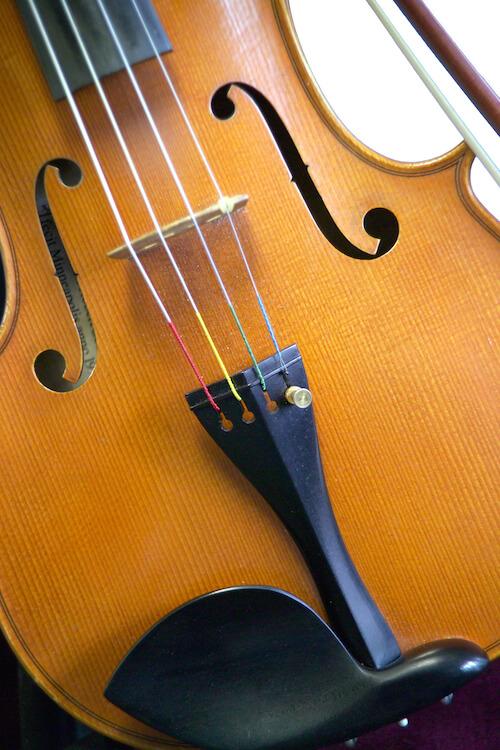 Photo of a viola