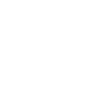 54666a965a38c99f0546ea7f_PIZZAS%20ORDERED.png