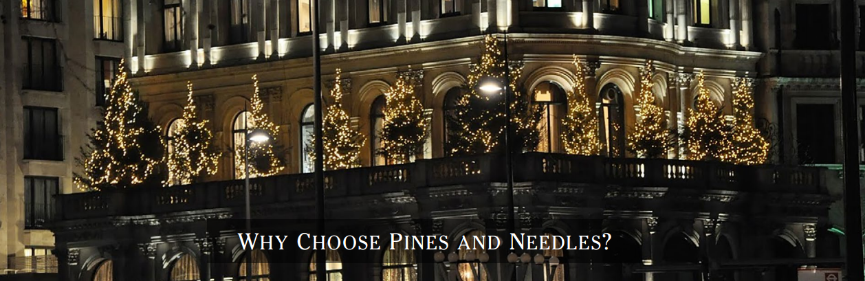 54352729b5b770fc173c9259_Why-Choose-Pines-and-Needles.png