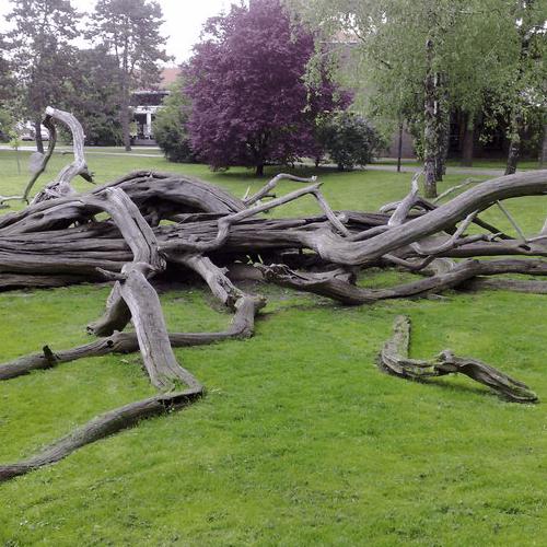 Park u Čakovcu