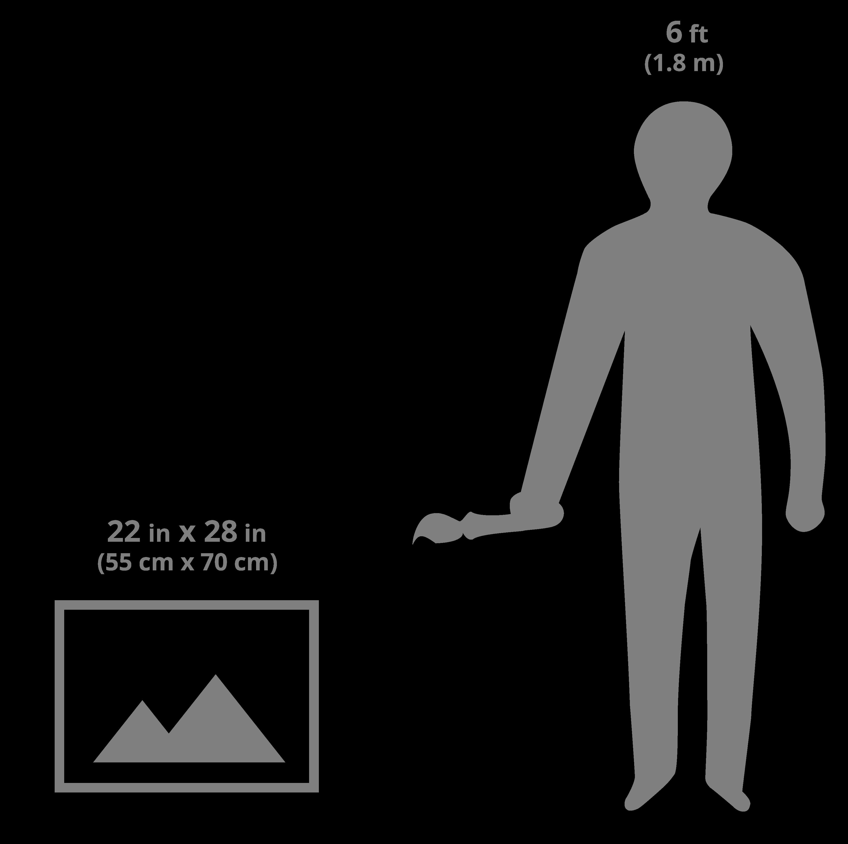 22x28 art sizing scale image