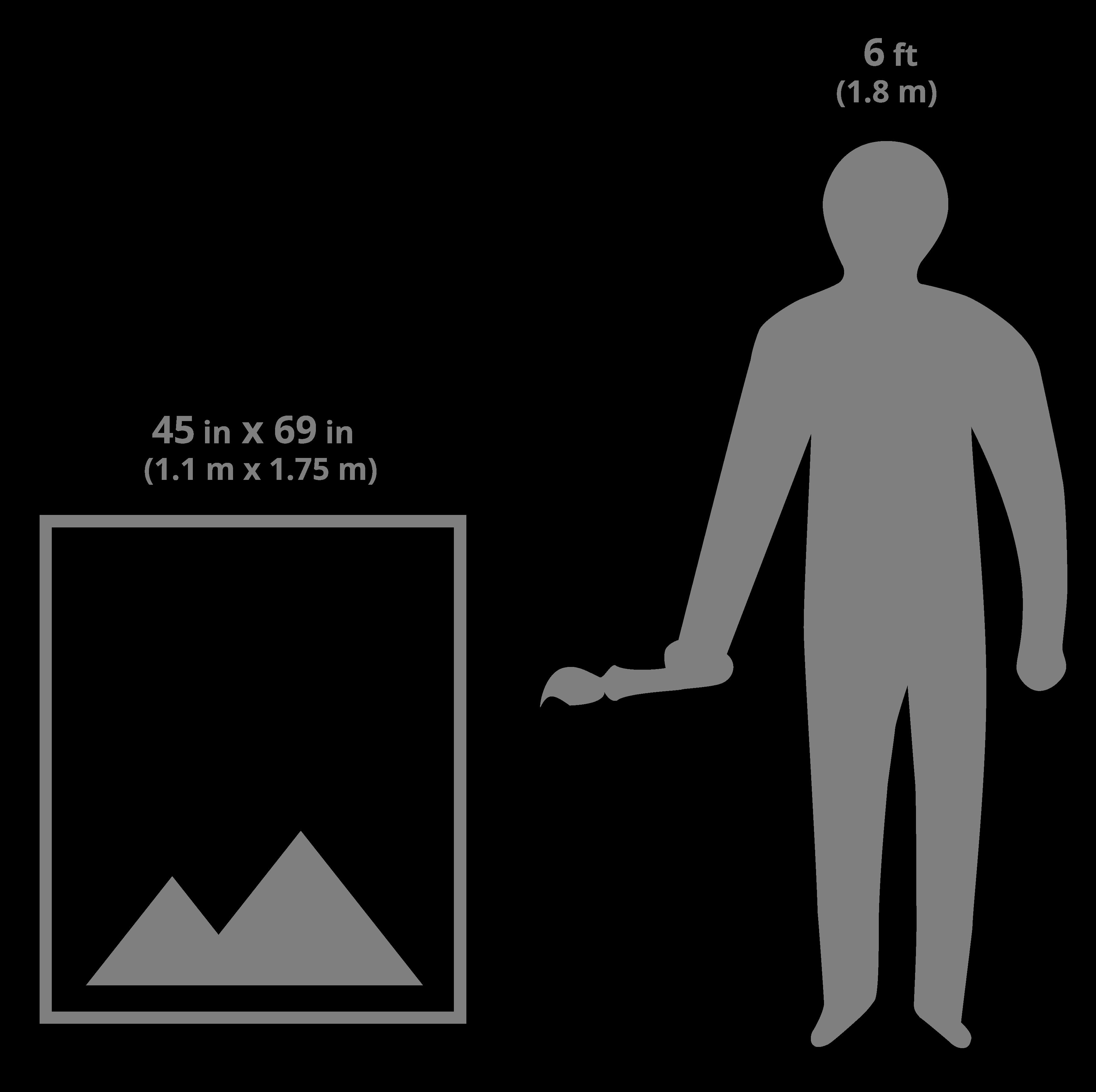 45x69 art sizing scale image