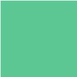 THE FRUITBRITE™ ADVANTAGE list icon