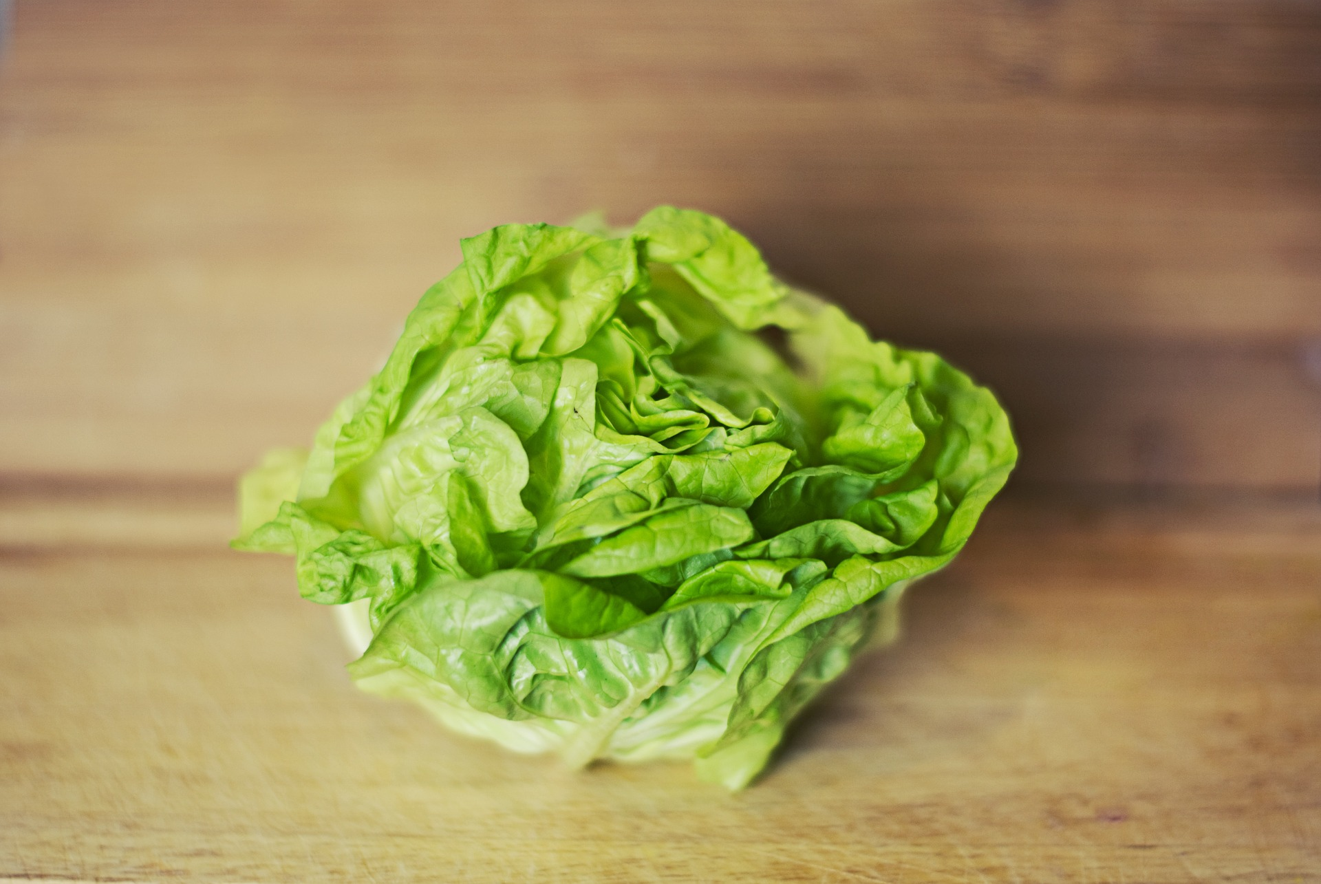Hazelblog article banner: photo of lettuce