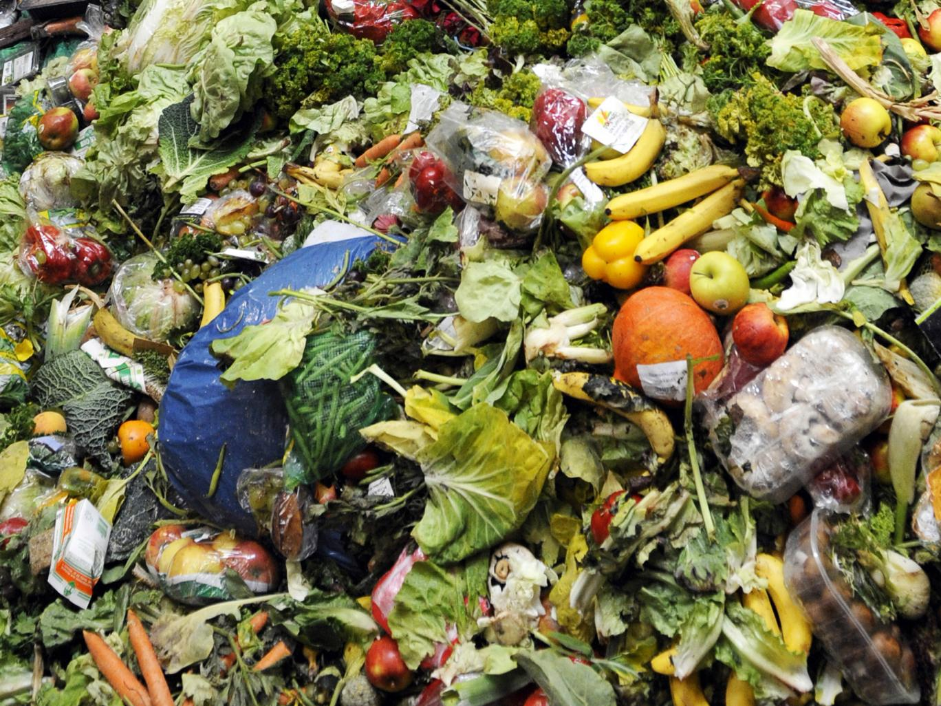 French food waste legislation was passed in February, while legislation in Italy is expected by 2016