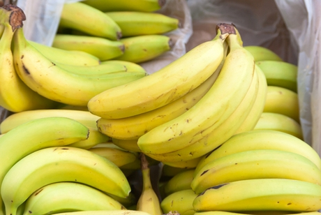 consumers are usually extremely sensitive to price increase in Bananas