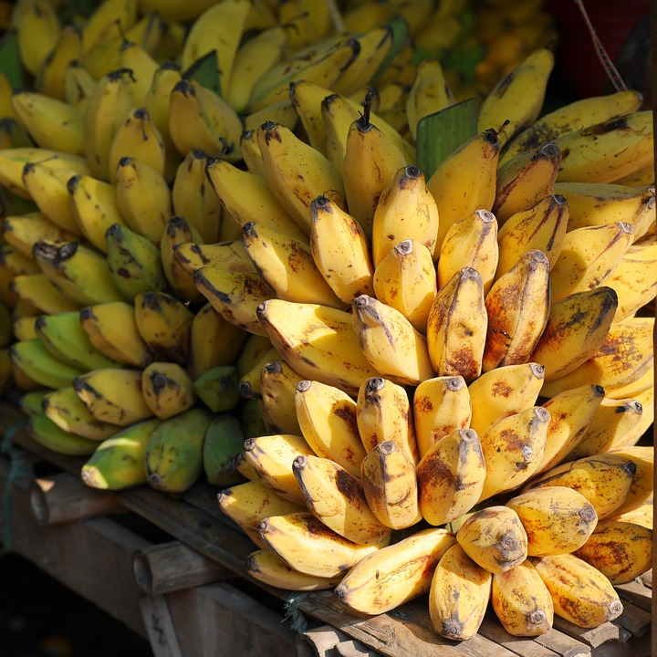 Bananas: Increased shelf life will lead to more food safety