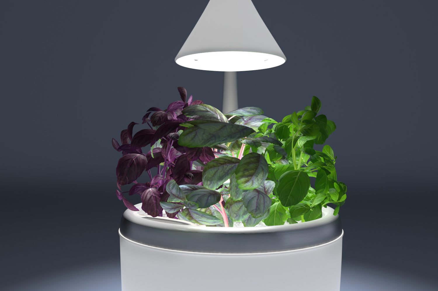 SproutsIO's Smart Growing System Will Revolutionize How You Get Your Greens