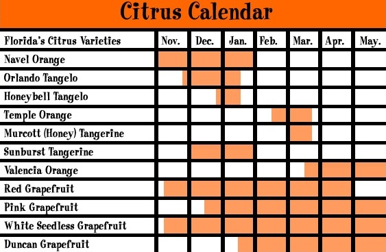 The above chart shows when Joshua Citrus' fruit is in season and ready to ship.