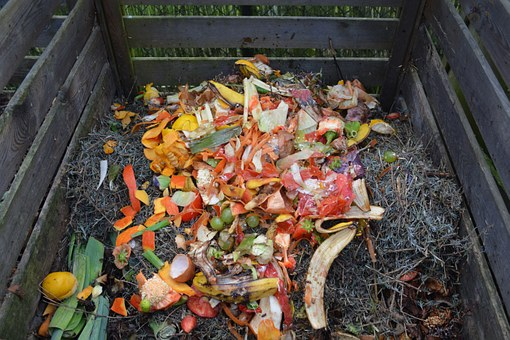 Scientists are turning to food waste to brighten the future