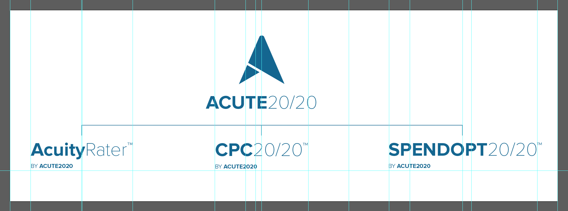 Image of Quetra Creative marketing and brand identity for Acute2020