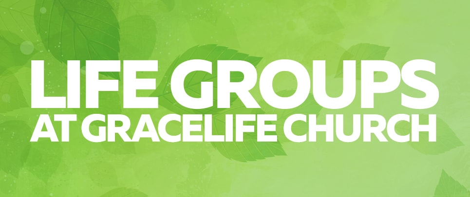 lifegroupGraphic