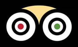 tripadvisor-official-partners