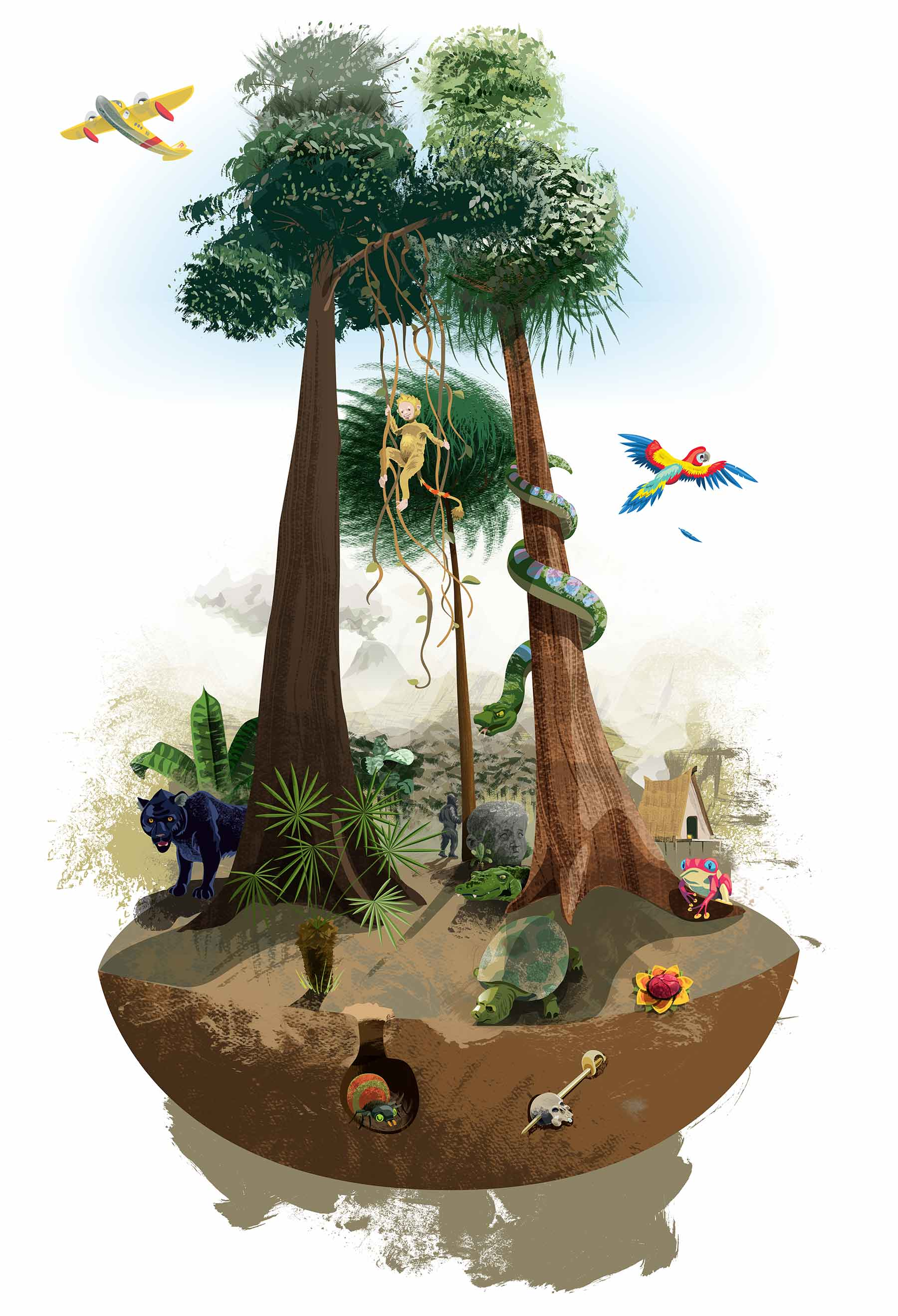 All jungle life is dwarfed by the elevated canopy, childrens imagination reaches higher