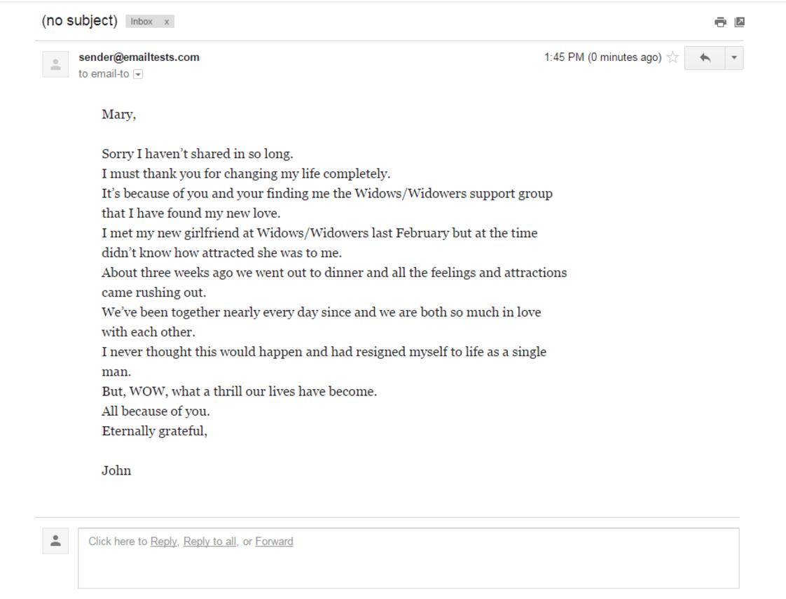 Wellist Pledge user story example
