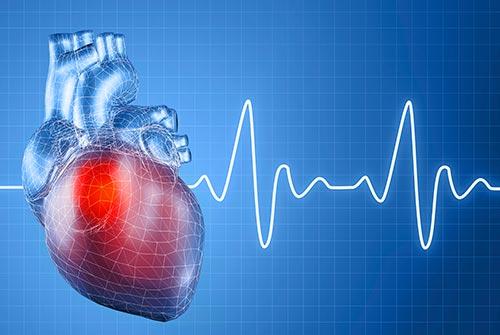 ACLS Heartbeat