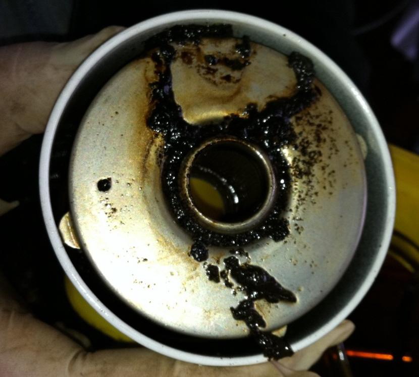 Blocked Fuel Filters caused by diesel bug