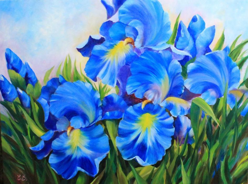 Синие Ирисы