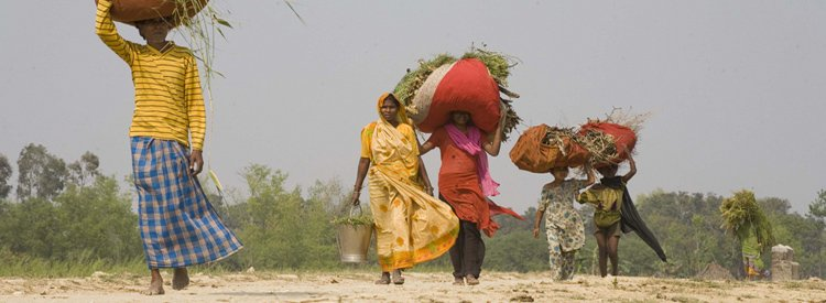 Landlessness & rural poverty in India