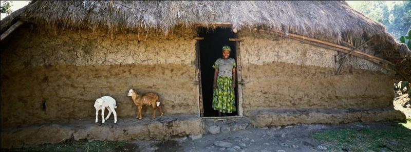 Rural poverty in Ethiopia