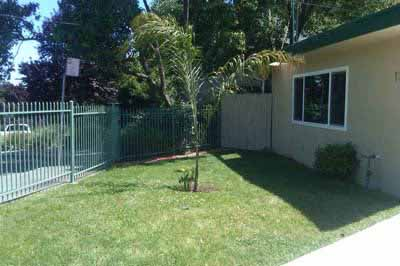 Garden-Style Apartments outdoors lawn