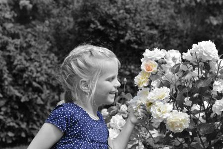 Kinderportrait mit Blume auf Rügen