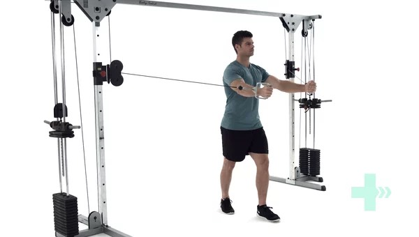 Image result for standing chest fly