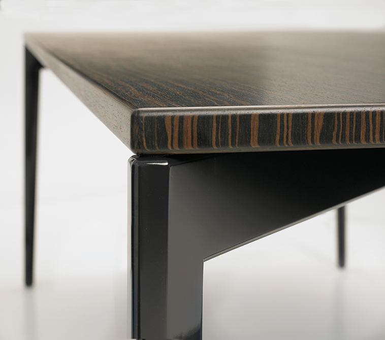 BUTZ + KLUG Architecture, Custom furniture, ebony table, detail
