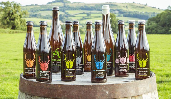 Bières bouteilles de la brasserie anglaise The Wild Beer