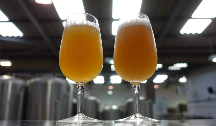 Les New England IPA sont troubles