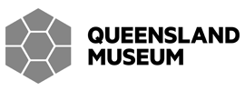 Logo Queensland museum