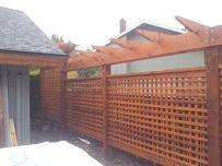 Recent cedar fence