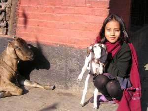 trip239_2_nepal_kind mit ziege