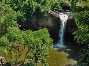 trip229_thailand_nationalpark_pb