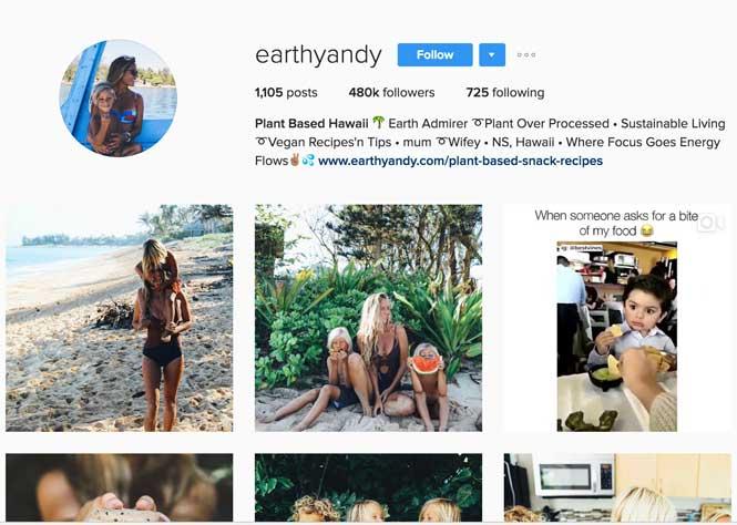 earthyandy instagram page, instagram influencers, influencer marketing