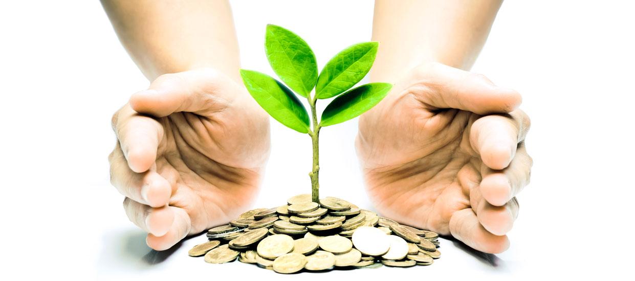 social responsibility money environment