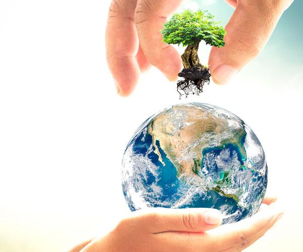 respect respectful earth environment