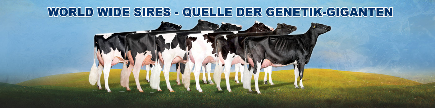 World Wide Sires – Quelle der Genetik-Giganten