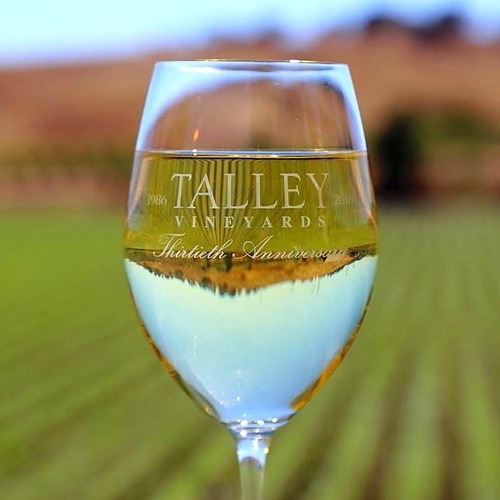 Talley Vineyards 30th Anniversary Shoot