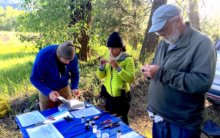 UM researchers and community volunteers at the bird banding station.