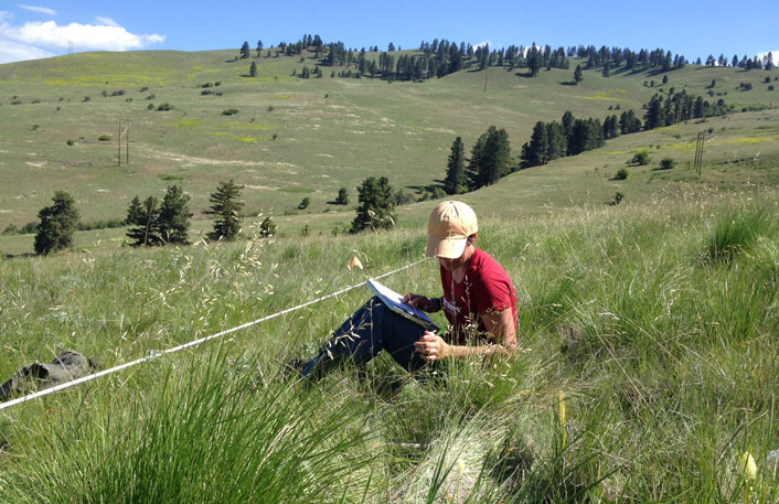 Jane Mangold conducting research on the Allied Waste-North Hills conservation easement near Missoula
