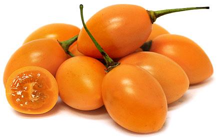Orange Tamarillo