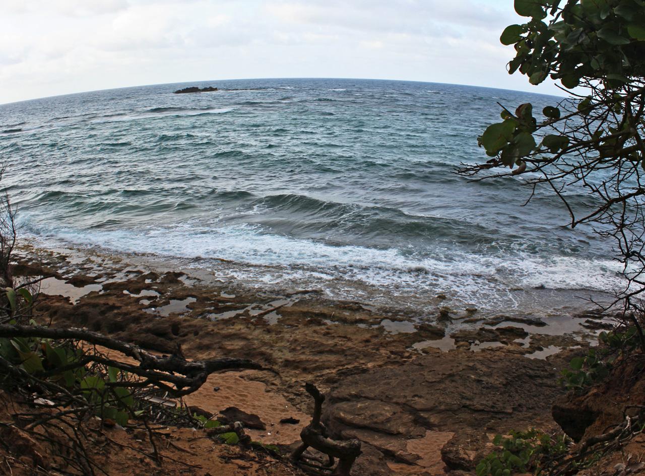 Ruta desde Carolina a Piñones, Loíza, Puerto Rico. ¡Playa, alcapurrias y paz!