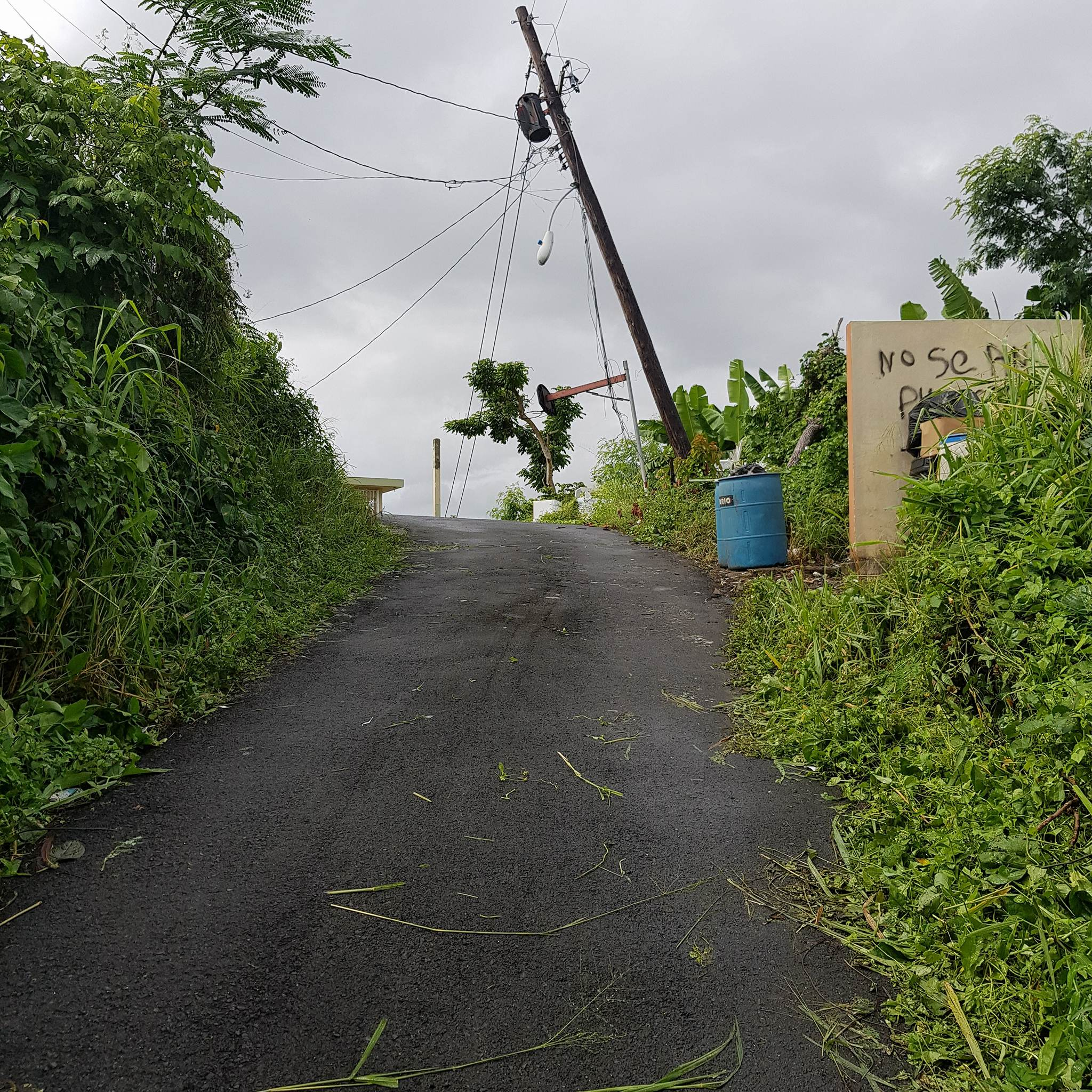 Jóvenes de Syracuse University (New York) y la Iglesia Bíblica Metro ayudan en Carolina, Puerto Rico tras el paso del Huracán María.