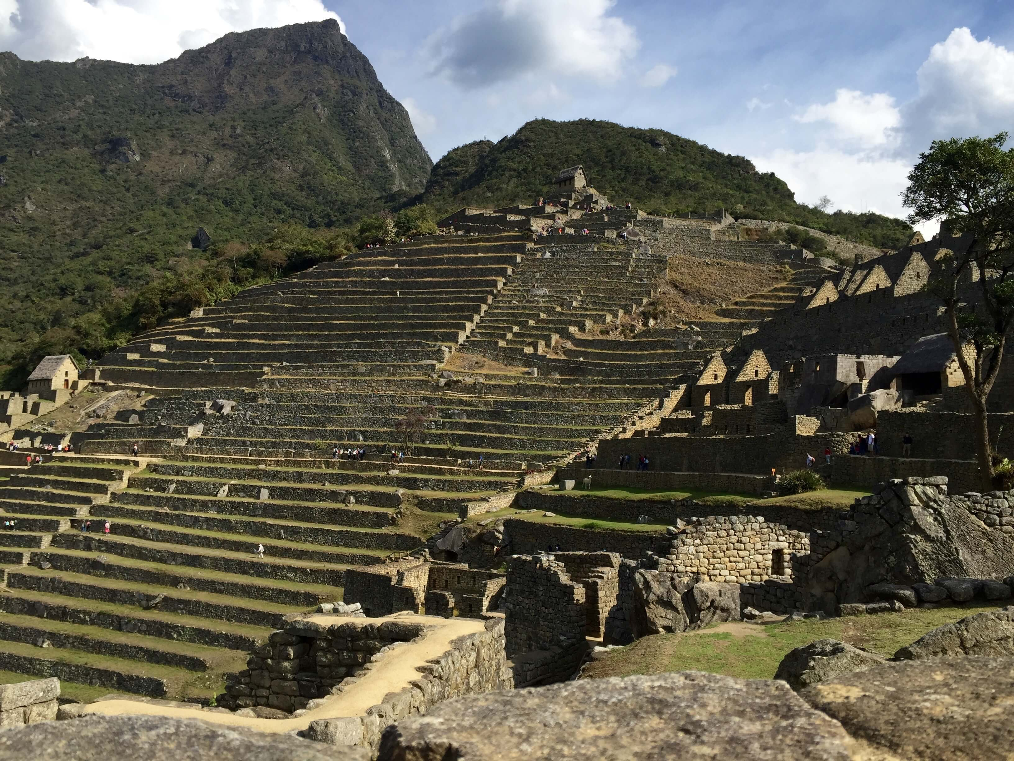 blog-10-facts-machu-picchu-terraces