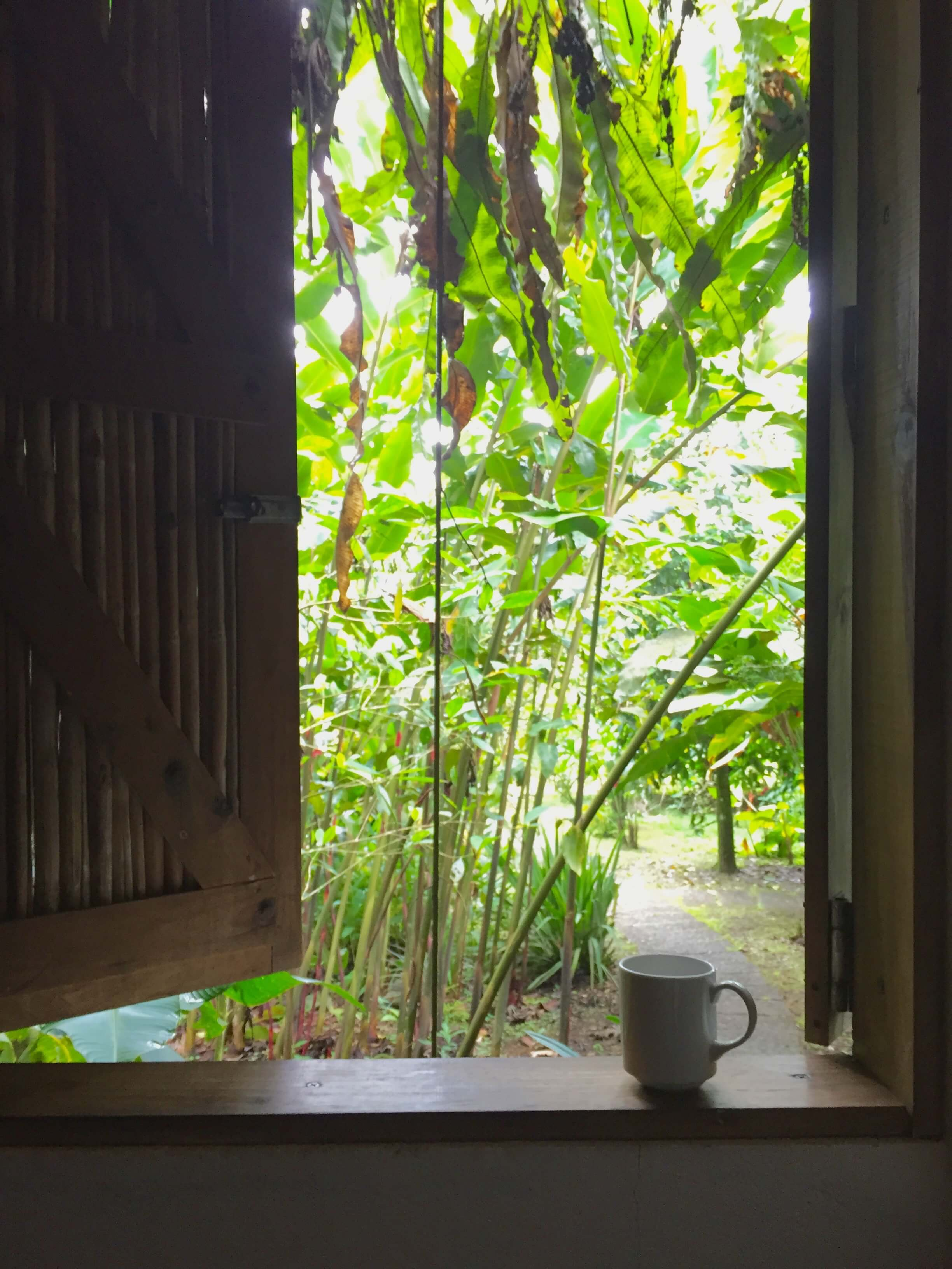 blog-costa-rica-9-days-rancho-margot-morning-view