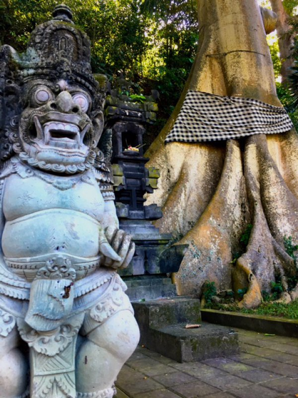 blog-Choose-Yourself-Today- New-Yoga-&-Life-Coaching-Retreat-in-Bali-tree-spirits