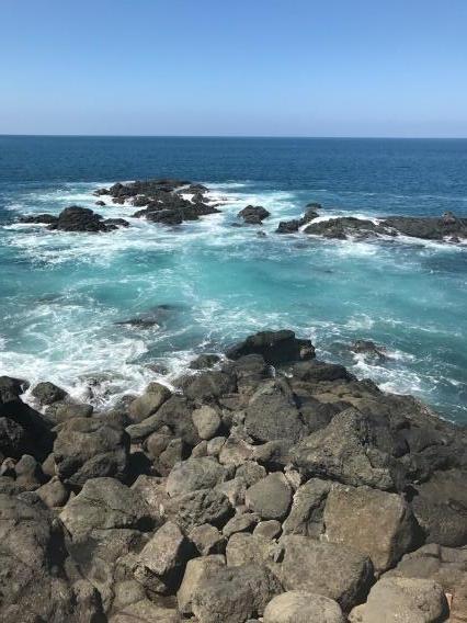 costa rica under30experiences beach