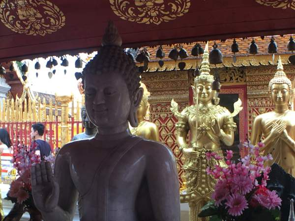 blog-Announcing-Our-Newest-Location-Thailand-chiang-mai.jpg